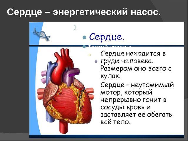 Почки фильтруют кровь и образуют из вредных субстанций мочу – жидкость, котор...