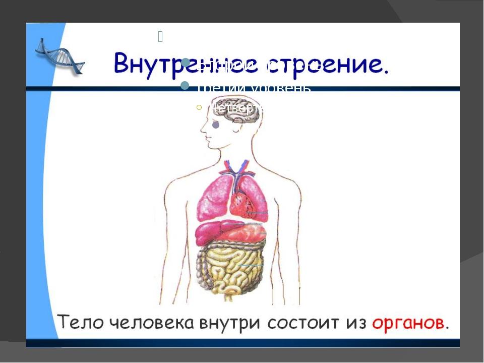 Сердце – энергетический насос.