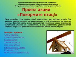 Муниципальное общеобразовательное учреждение «Макарьевская средняя общеобраз