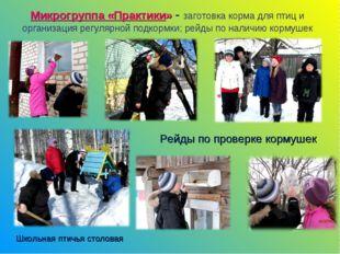 Микрогруппа «Практики» - заготовка корма для птиц и организация регулярной по