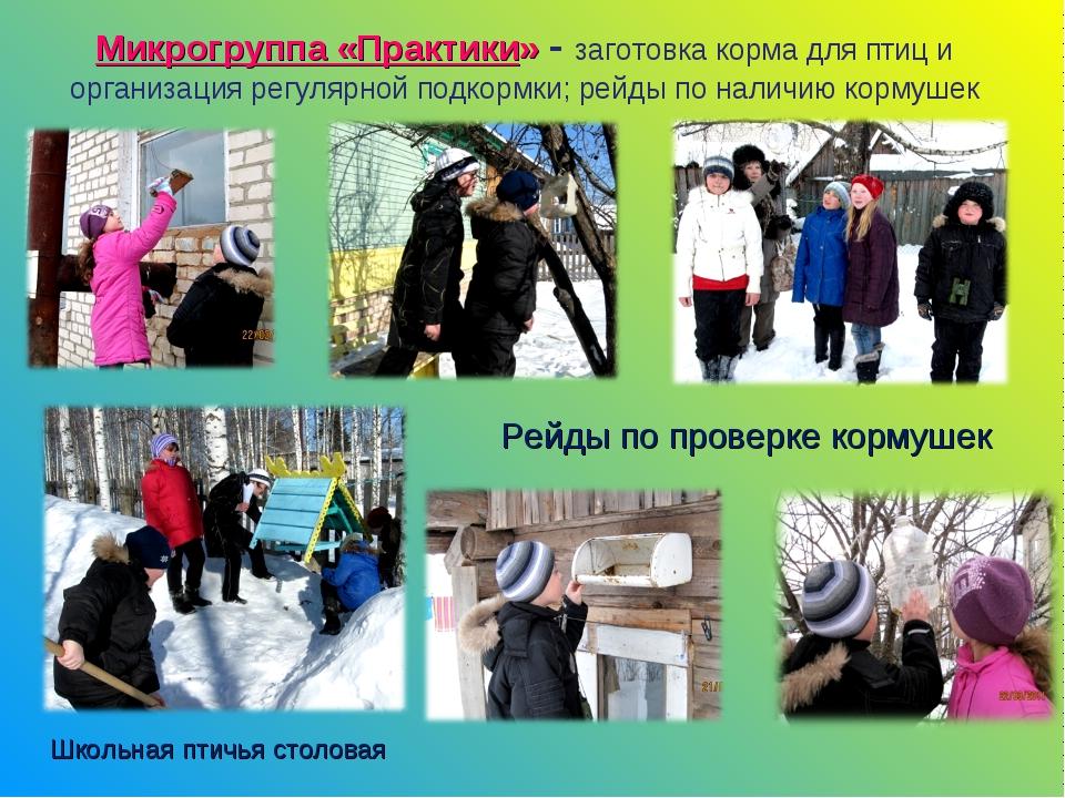 Микрогруппа «Практики» - заготовка корма для птиц и организация регулярной по...