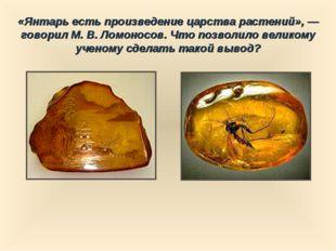 «Янтарь есть произведение царства растений», — говорил М. В. Ломоносов. Что п