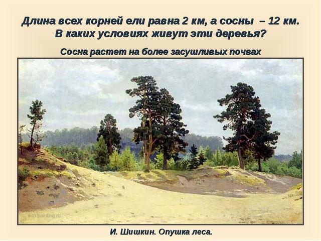 Длина всех корней ели равна 2 км, а сосны – 12 км. В каких условиях живут эт...