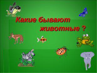 Какие бывают животные ?
