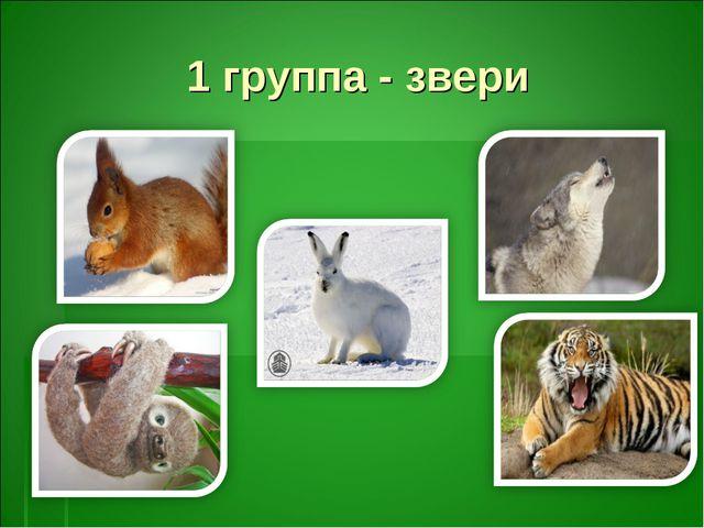 1 группа - звери