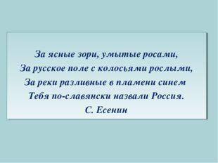 За ясные зори, умытые росами, За русское поле с колосьями рослыми, За реки р