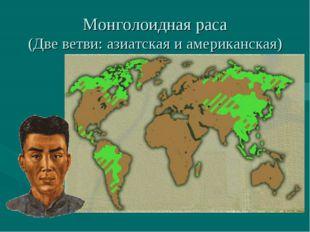 Монголоидная раса (Две ветви: азиатская и американская)
