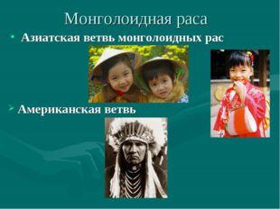 Монголоидная раса Азиатская ветвь монголоидных рас Американская ветвь