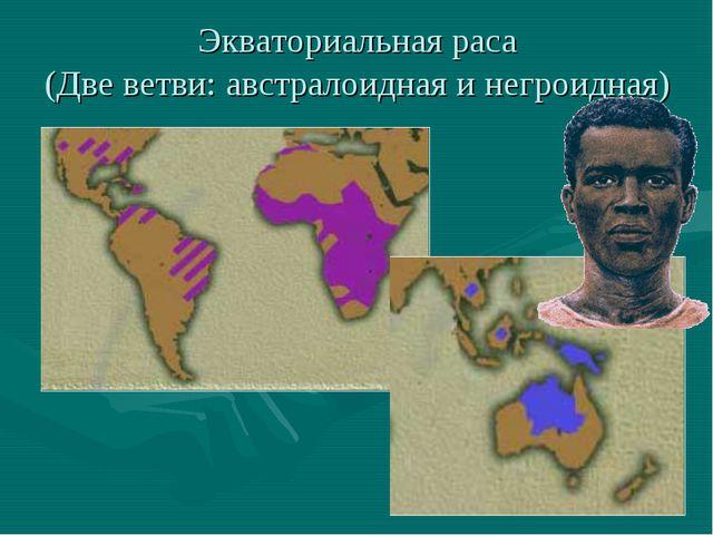 Экваториальная раса (Две ветви: австралоидная и негроидная)