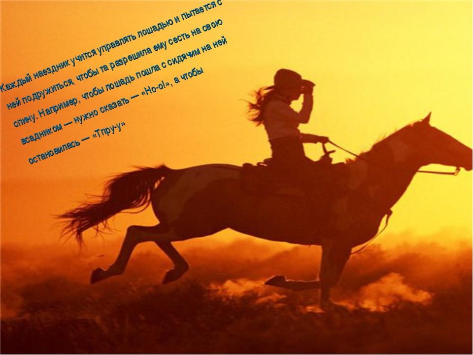Каждый наездник учится управлять лошадью и пытается с ней подружиться, чтобы...