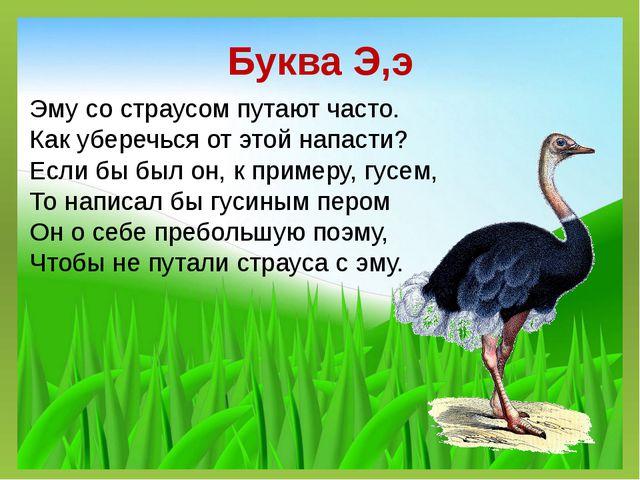 Буква Э,э Эму со страусом путают часто. Как уберечься от этой напасти? Если б...