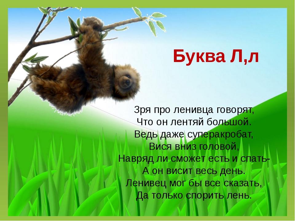 Буква Л,л Зря про ленивца говорят, Что он лентяй большой. Ведь даже суперакро...