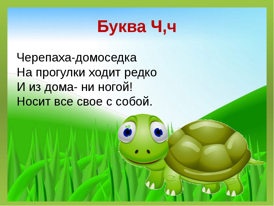 Буква Ч,ч Черепаха-домоседка На прогулки ходит редко И из дома- ни ногой! Нос...