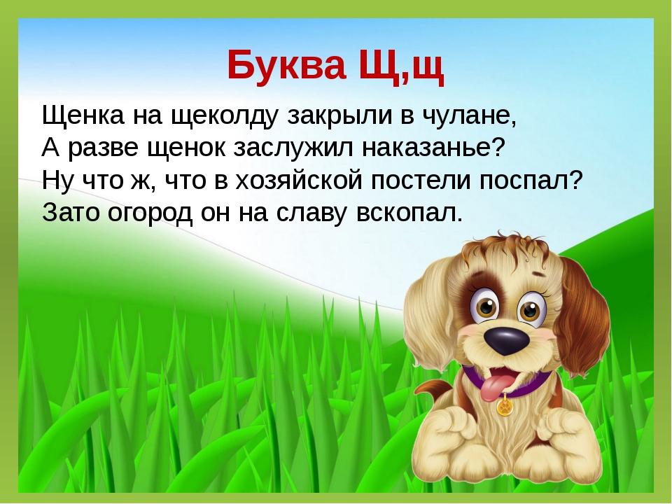Буква Щ,щ Щенка на щеколду закрыли в чулане, А разве щенок заслужил наказанье...