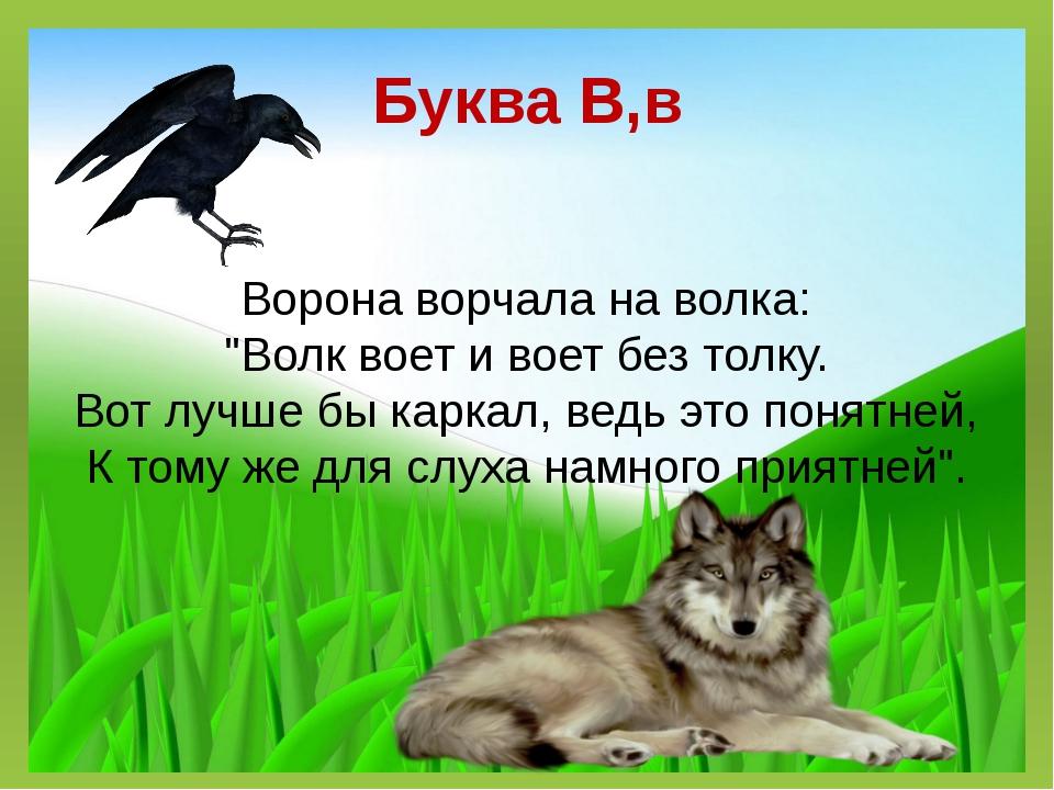 """Буква В,в Ворона ворчала на волка: """"Волк воет и воет без толку. Вот лучше бы..."""