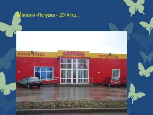 Магазин «Полушка» ,2014 год .