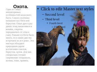 Охота. Одна из самых неповторимых особенностей казахского быта. Самого охотни