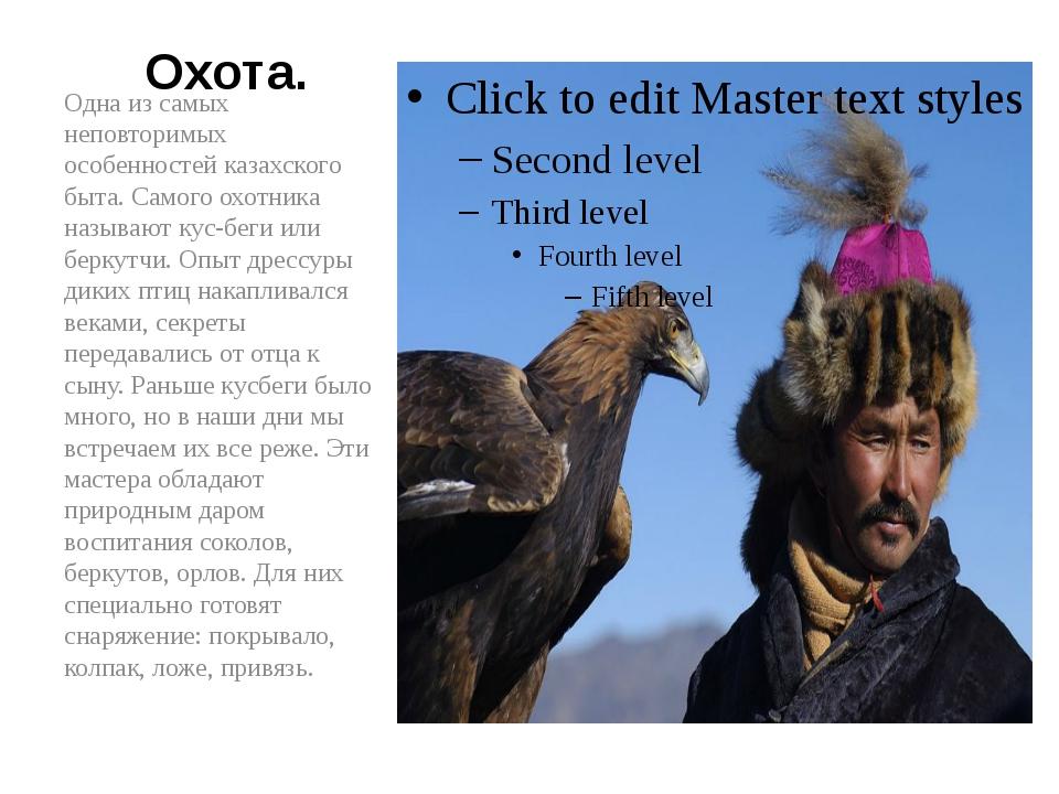 Охота. Одна из самых неповторимых особенностей казахского быта. Самого охотни...