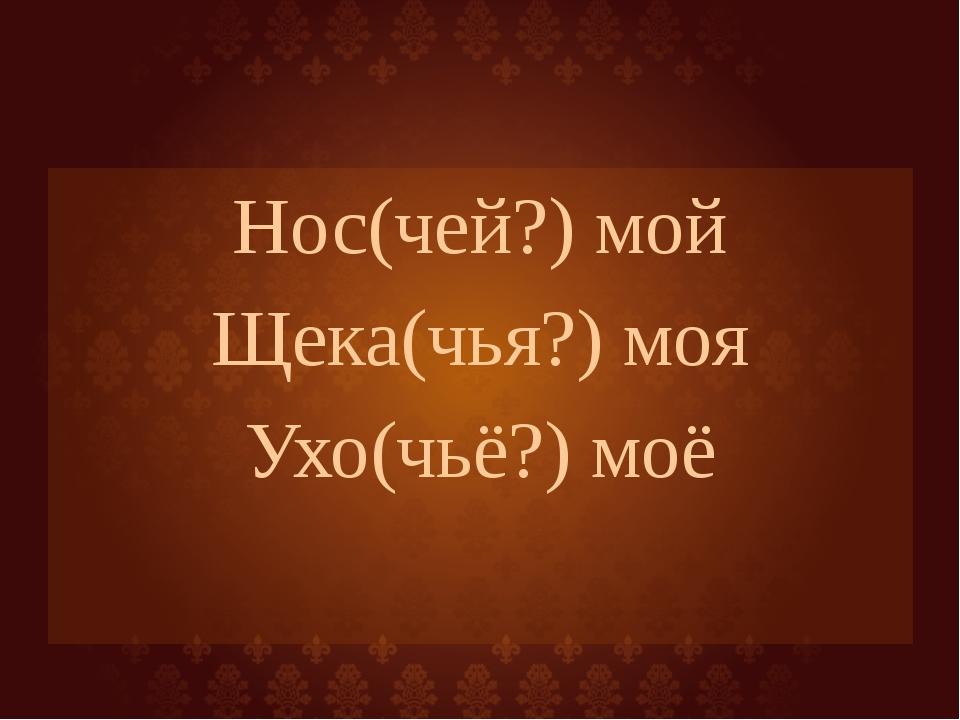 Нос(чей?) мой Щека(чья?) моя Ухо(чьё?) моё
