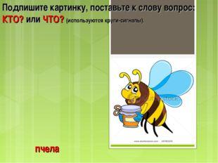 пчела Подпишите картинку, поставьте к слову вопрос: КТО? или ЧТО? (используют