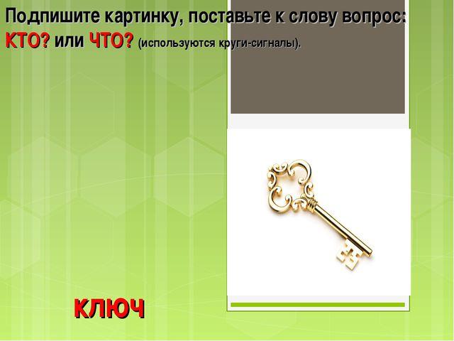 ключ Подпишите картинку, поставьте к слову вопрос: КТО? или ЧТО? (используютс...