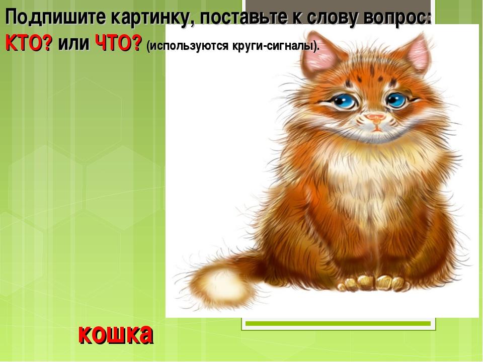 кошка Подпишите картинку, поставьте к слову вопрос: КТО? или ЧТО? (используют...