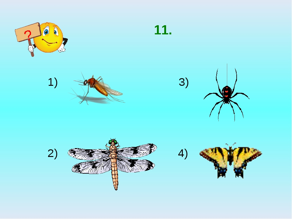 11. 3) 2) 4) ?