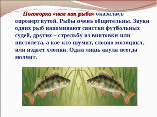 Поговорка «нем как рыба» оказалась опровергнутой. Рыбы очень общительны. Зву