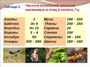 Таблица 2. Частота колебаний крыльев насекомых и птиц в полете, Гц  Аист