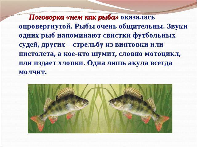 Поговорка «нем как рыба» оказалась опровергнутой. Рыбы очень общительны. Зву...
