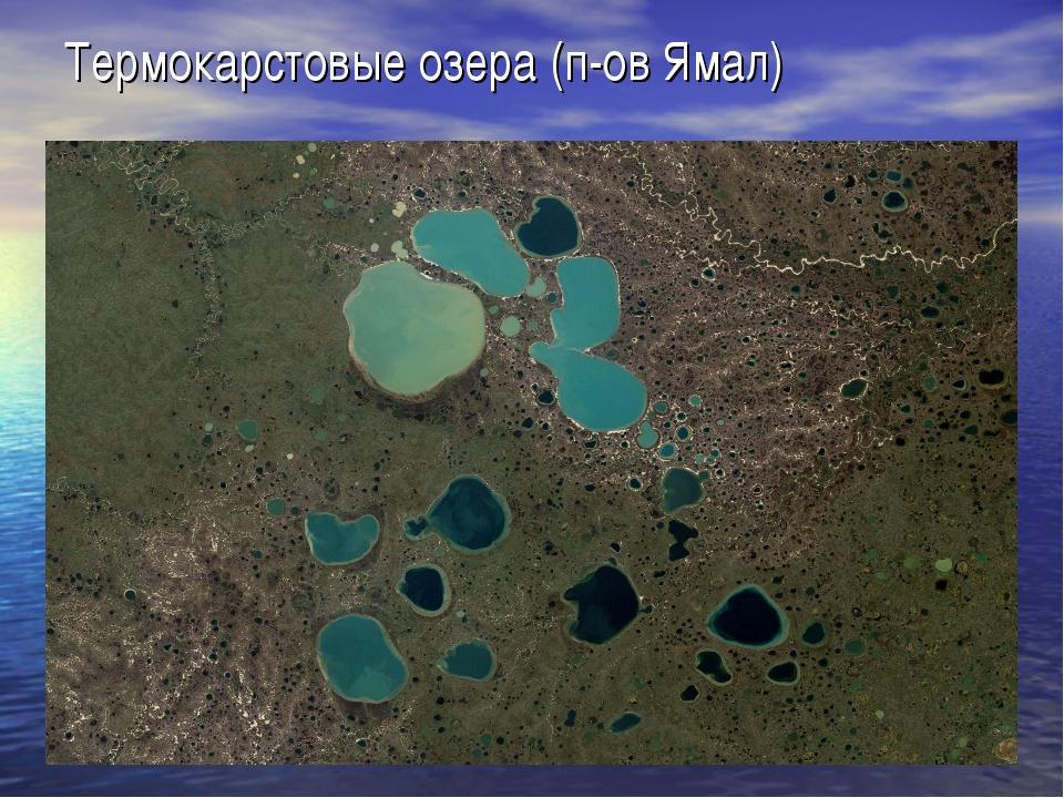 Термокарстовые озера (п-ов Ямал)
