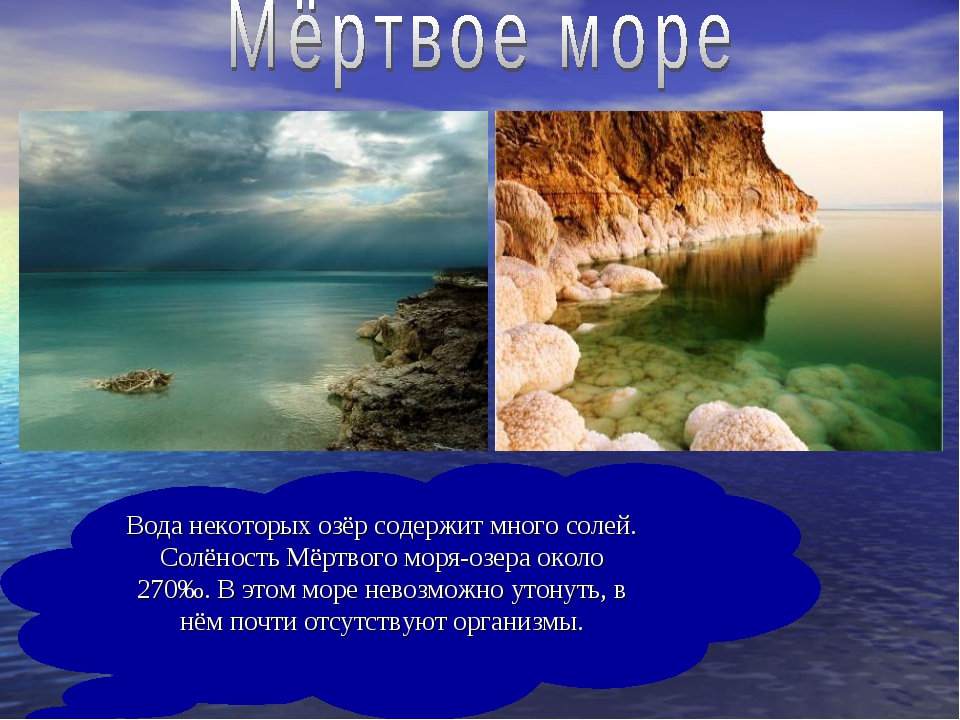 Вода некоторых озёр содержит много солей. Солёность Мёртвого моря-озера около...