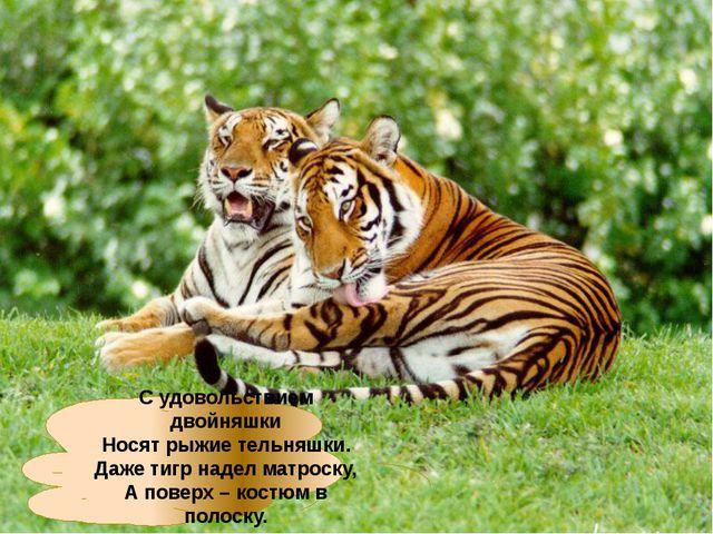 С удовольствием двойняшки Носят рыжие тельняшки. Даже тигр надел матроску, А...