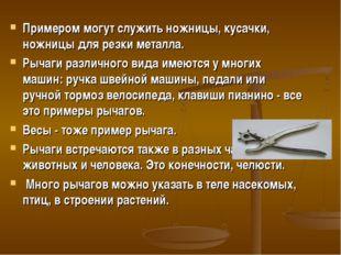 Примером могут служить ножницы, кусачки, ножницы для резки металла. Рычаги ра