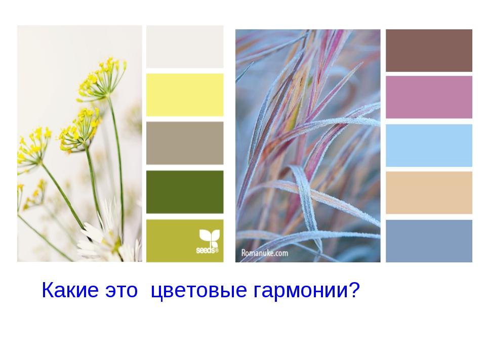 Какие это цветовые гармонии?