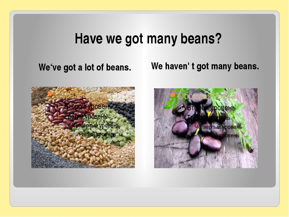 Have we got many beans? We've got a lot of beans. We haven' t got many beans.