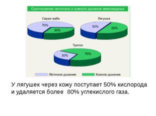 У лягушек через кожу поступает 50% кислорода и удаляется более 80% углекислог