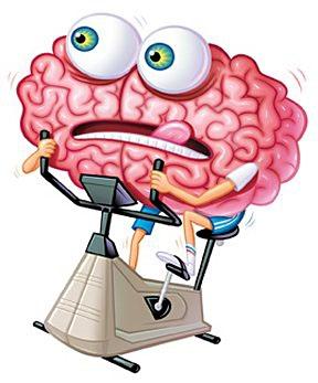 тренировка сосудов головного мозга