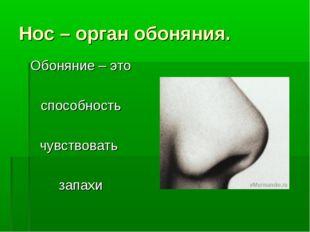 Нос – орган обоняния. Обоняние – это способность чувствовать запахи