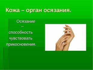 Кожа – орган осязания. Осязание – способность чувствовать прикосновения.