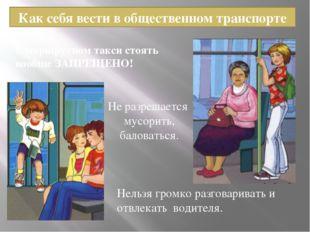 Как себя вести в общественном транспорте В маршрутном такси стоять вообще ЗАП