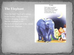 The Elephant Time for bed! The Calf's asleep, In his basket, snug and deep. T