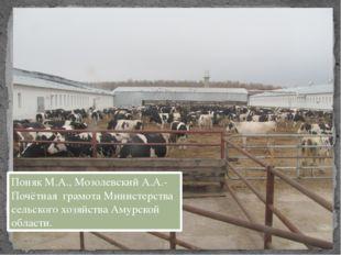 Поняк М.А., Мозолевский А.А.- Почётная грамота Министерства сельского хозяйст