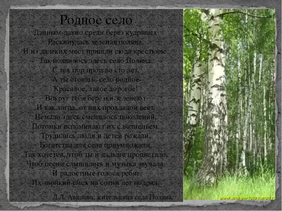 Родное село Давным-давно среди берёз кудрявых Раскинулась зелёная поляна. И и...