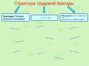 Структура трудовой бригады Бригадир: Петрова Наталья Николаевна Члены бригад
