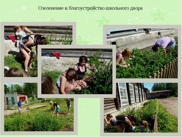 Озеленение и благоустройство школьного двора