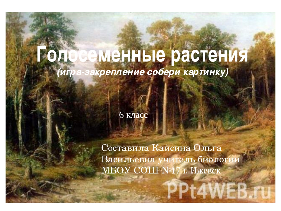 Голосеменные растения (игра-закрепление собери картинку) 6 класс Составила Ка...