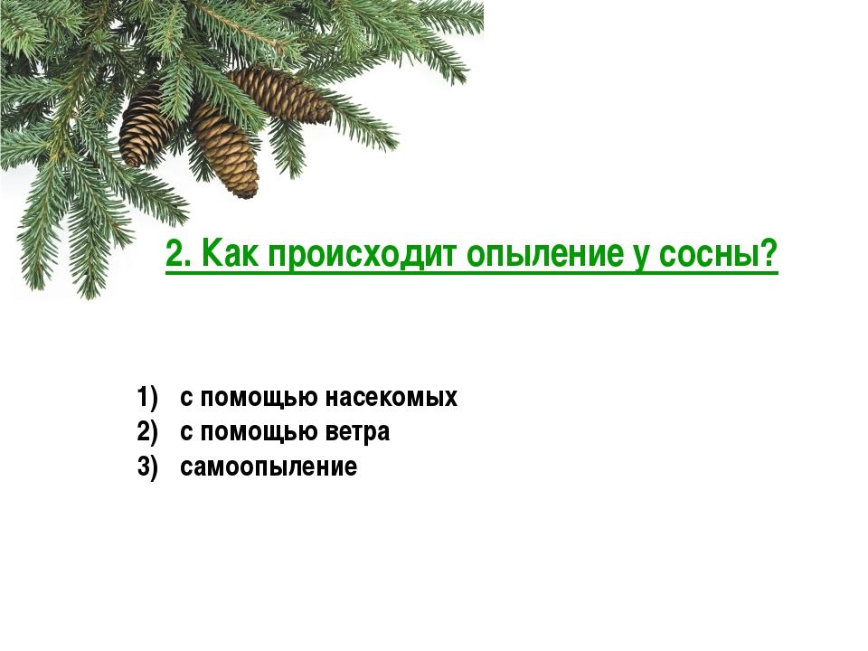 3. Что образуется в результате оплодотворения у сосны? заросток спора зигота