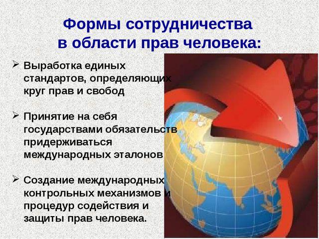 Выработка единых стандартов, определяющих круг прав и свобод Принятие на себя...