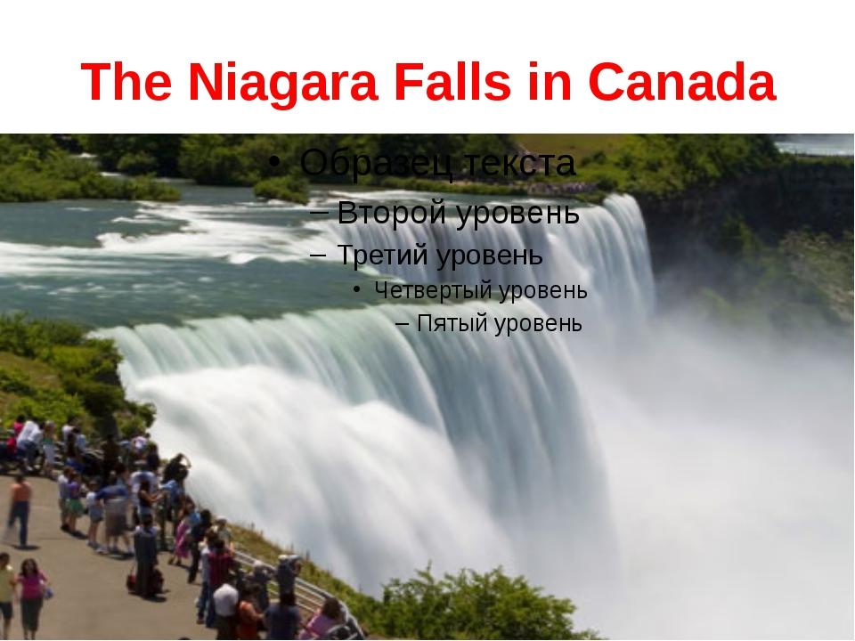 The Niagara Falls in Canada